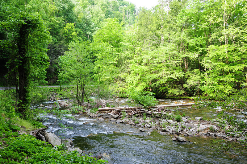 130518_Tennessee_0796.JPG