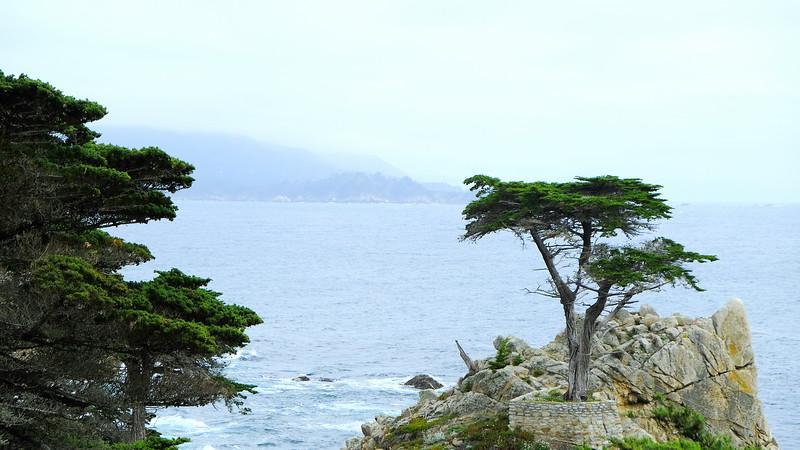 California Day 3 Monterey 05-29-2017 28.JPG