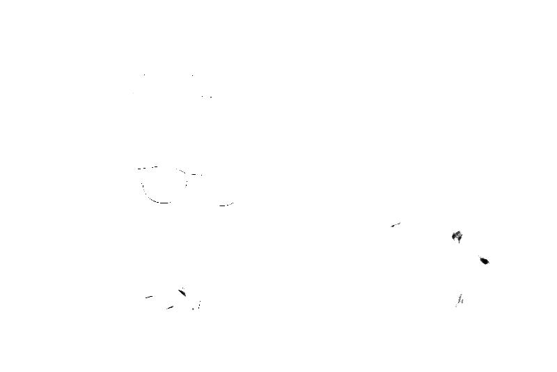 DSC09307.png