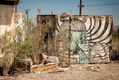2019 Palm Springs-Salton-Anza Borrego