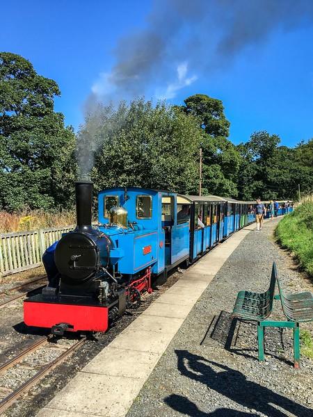 Blue cars of a narrow gauge steam train