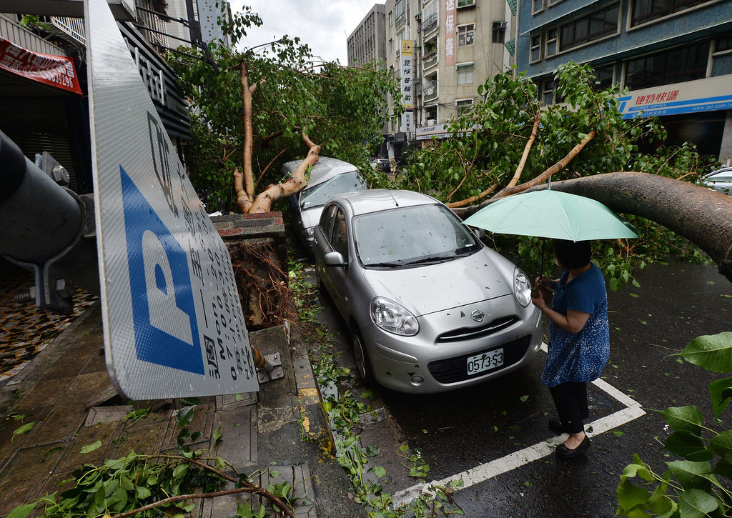 ". A woman views a vehicle damaged by fallen trees after Typhoon Soulik hit Taipei on July 13, 2013.  Thousands of people were evacuated in Taiwan and the entire island declared an ""alert zone\"" as Typhoon Soulik made landfall, killing one person and injuring seven. MARK RALSTON/AFP/Getty Images"
