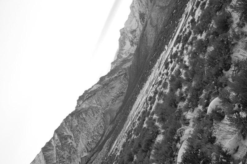 Untitled-Grayscale-15.jpg