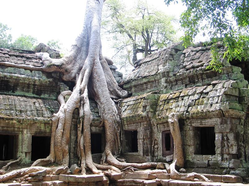 Images from Angkor Wat (17).jpg