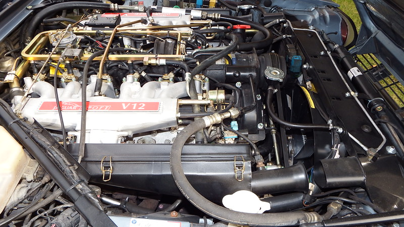 DSCF3281.JPG