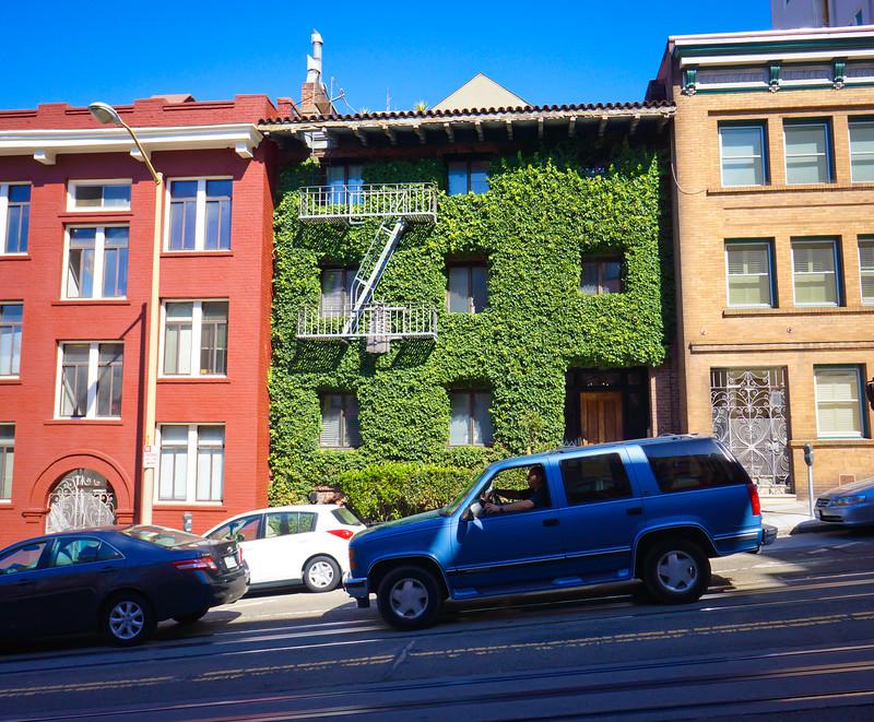 San Francisco Ivy House