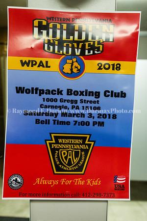 03/03/2018 Golden Gloves Boxing