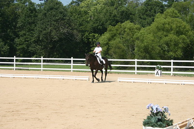 Bridle 12 Brune And Sophie Creech