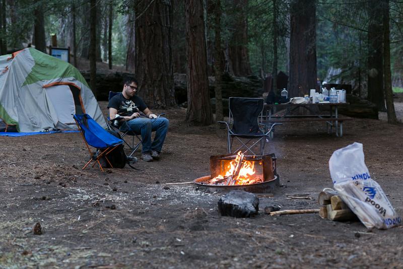Sequoia_0728.jpg