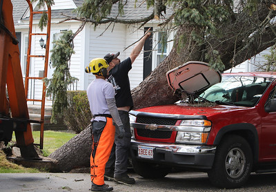 Wind storm damage to trees in Lowell 051620