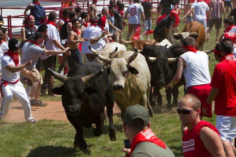 the_bulls_38_20141019_1300019612.jpg