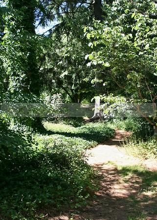 Bailey Arboretum 061106 -  LI NY