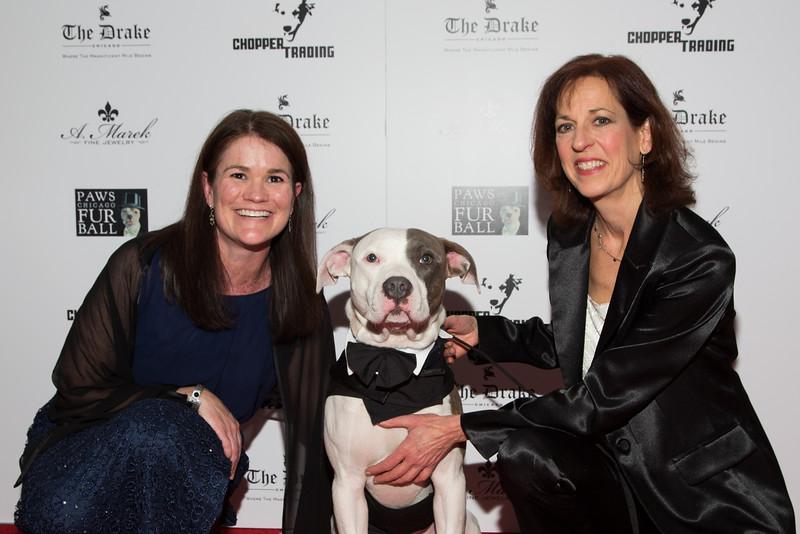 Guest + Joan Harris + Watson the Watchdog 3 (20141115-PCFB-201).jpg