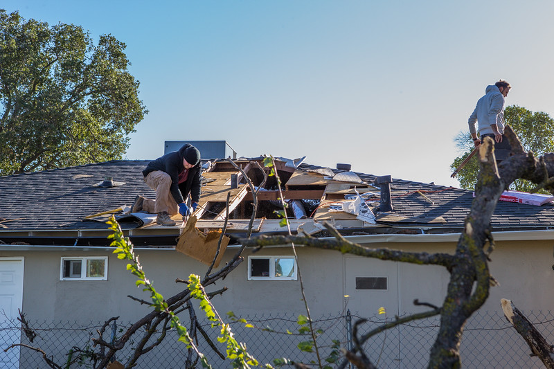 5671 Wallace Ave - Tree 1030am 12 16 2017 Extremly Windy Conditions-114.jpg