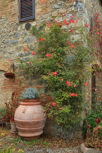 On a small farm in Tuscany