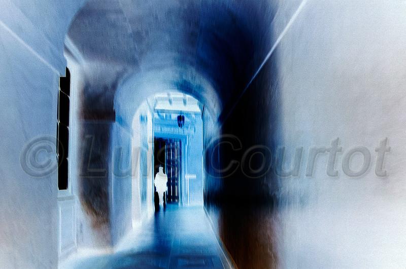 fontainebleau-DSC_3926.jpg