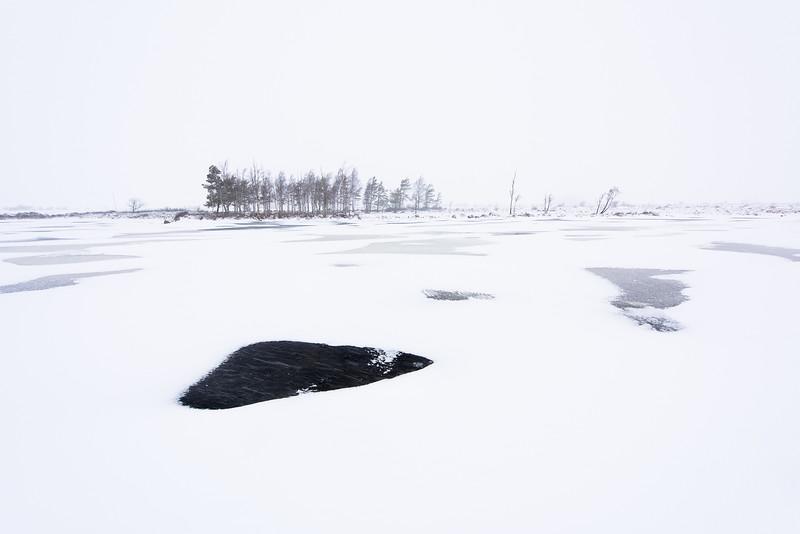 Ölands stora alvar