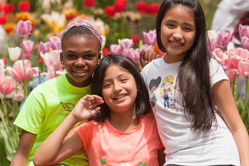 Tulip Garden Favorite may2015-7025.jpg