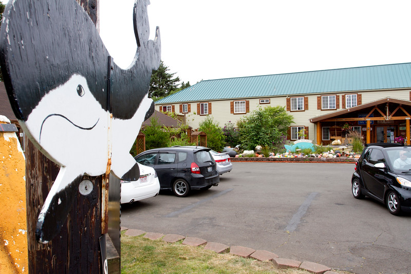 A whale of a good time!  Sorry, for the stupid pun, but we really did have an amazing time visiting for the few (and far too short) days we were here at the Historic Anchor Inn.  We are already planning our next visit!