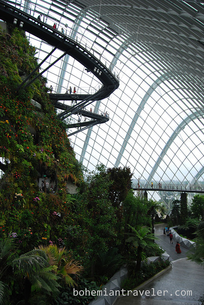 inside the Cloud Forest at Gardens by the Bay.jpg