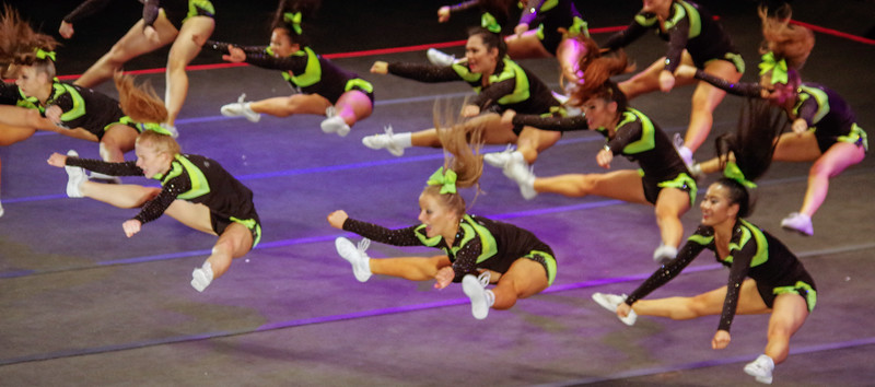 20151017-Cheer_Majors_2015-0013- Copyright David Brewster 2014 All rights reserved-2.jpg