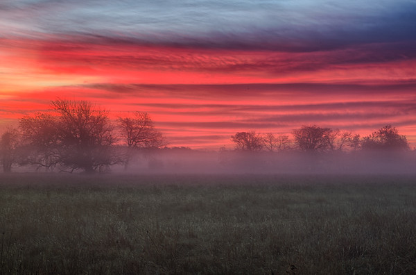Morning Fogg
