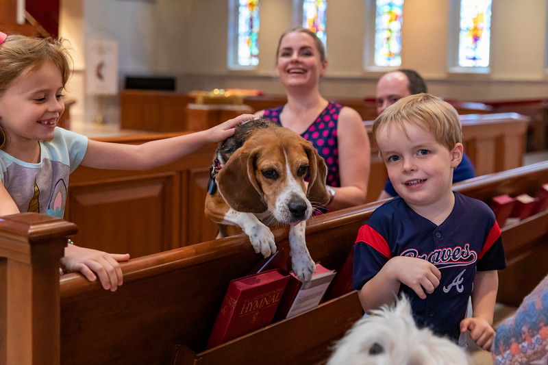 10.06.19 Blessing of the Animals