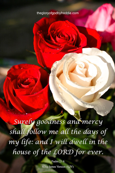 IMG_9446  Psalms 23-6a.jpg