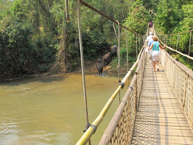 And back we go across that bridge (see elephants down below)