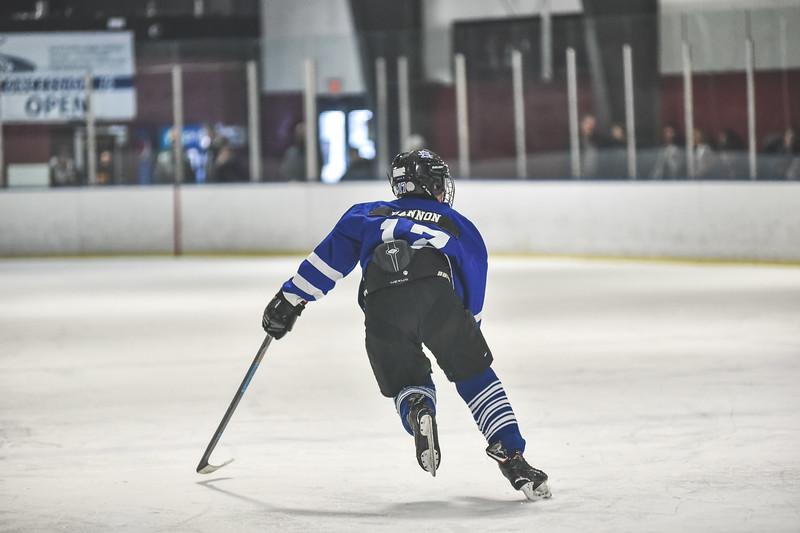 Leafs-80.jpg