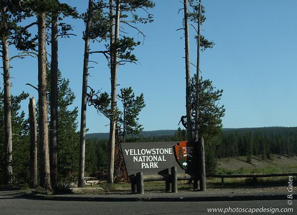 SmugRetreat 2011: Yellowstone National Park