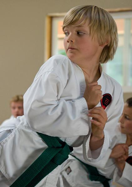 Nic(martial art)20100619A-6938A.jpg