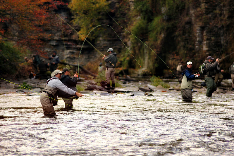 Salmon River 152.jpg