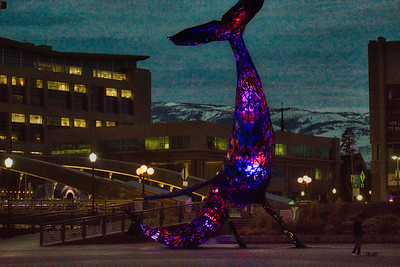 Stained Glass Whale RENO HDRS 2020