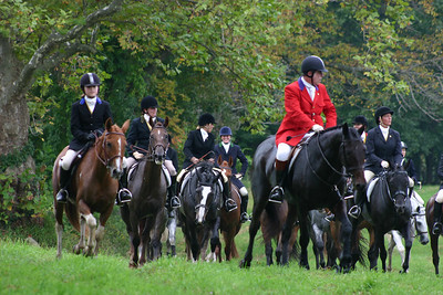 Various Horse events