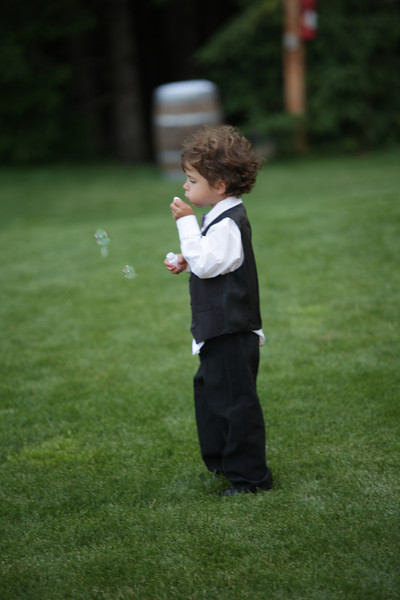 20120630_Schmidt Wedding_0311.JPG