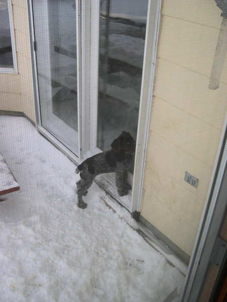I'd like to come in.