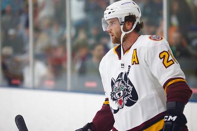 AHL 2012/13