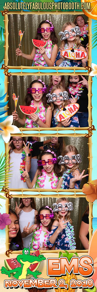 Absolutely Fabulous Photo Booth - (203) 912-5230 -181102_195917.jpg