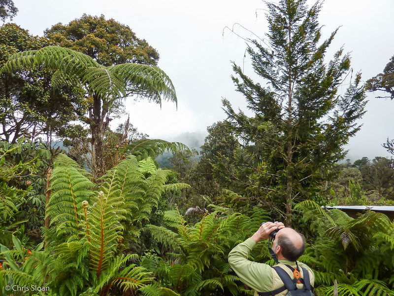Kumul Lodge, Papua New Guinea (09-28-2013)-2.jpg