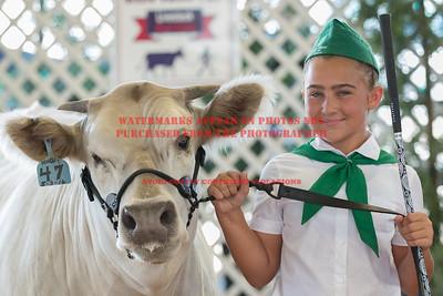 2017 Chino Fair - Beef