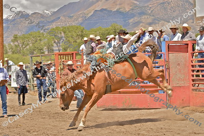 Mackay Rodeo