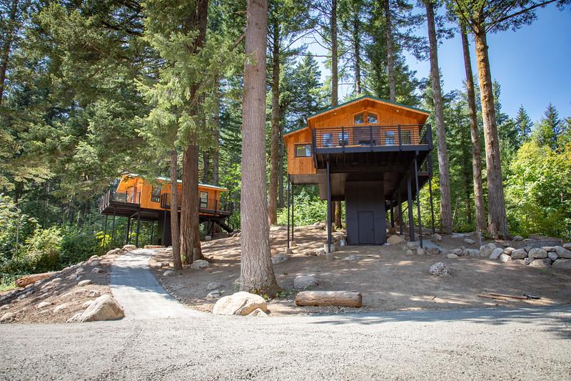Treehouses_2020-1001.jpg
