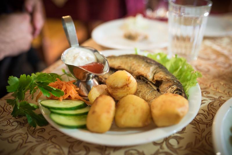 fish food-1.jpg