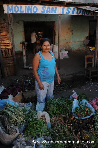 Every Type of Herb for Terere - Concepcion, Paraguay