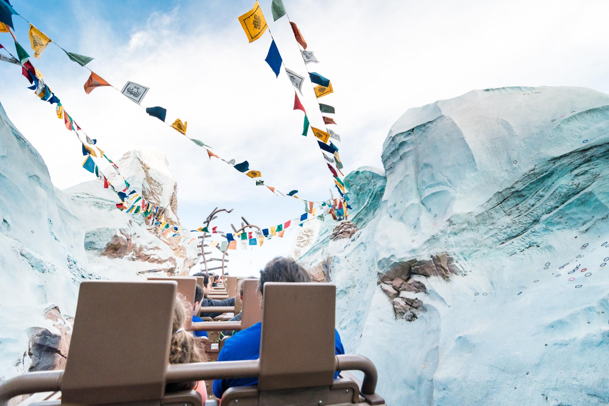 Expedition Everest Summit - Disney's Animal Kingdom