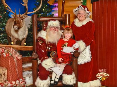 2016 Christmas Holly