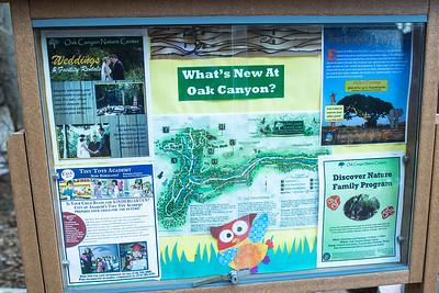 Oak Canyon Nature Center 1.11.2014