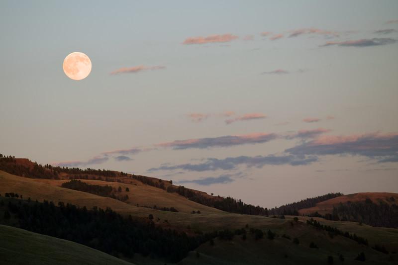Yellowstone (4).jpg