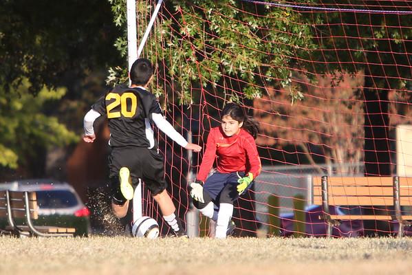 Nov 13 - Soccer Gold vs St Joseph
